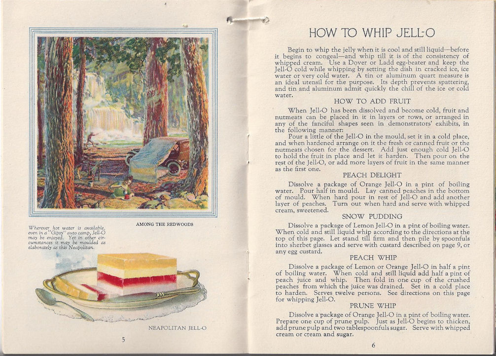 Jell-O: America's Most                                         Famous Dessert At Home and                                         Everywhere 1922 & Jell-O Ice                                         Cream Powder Insert