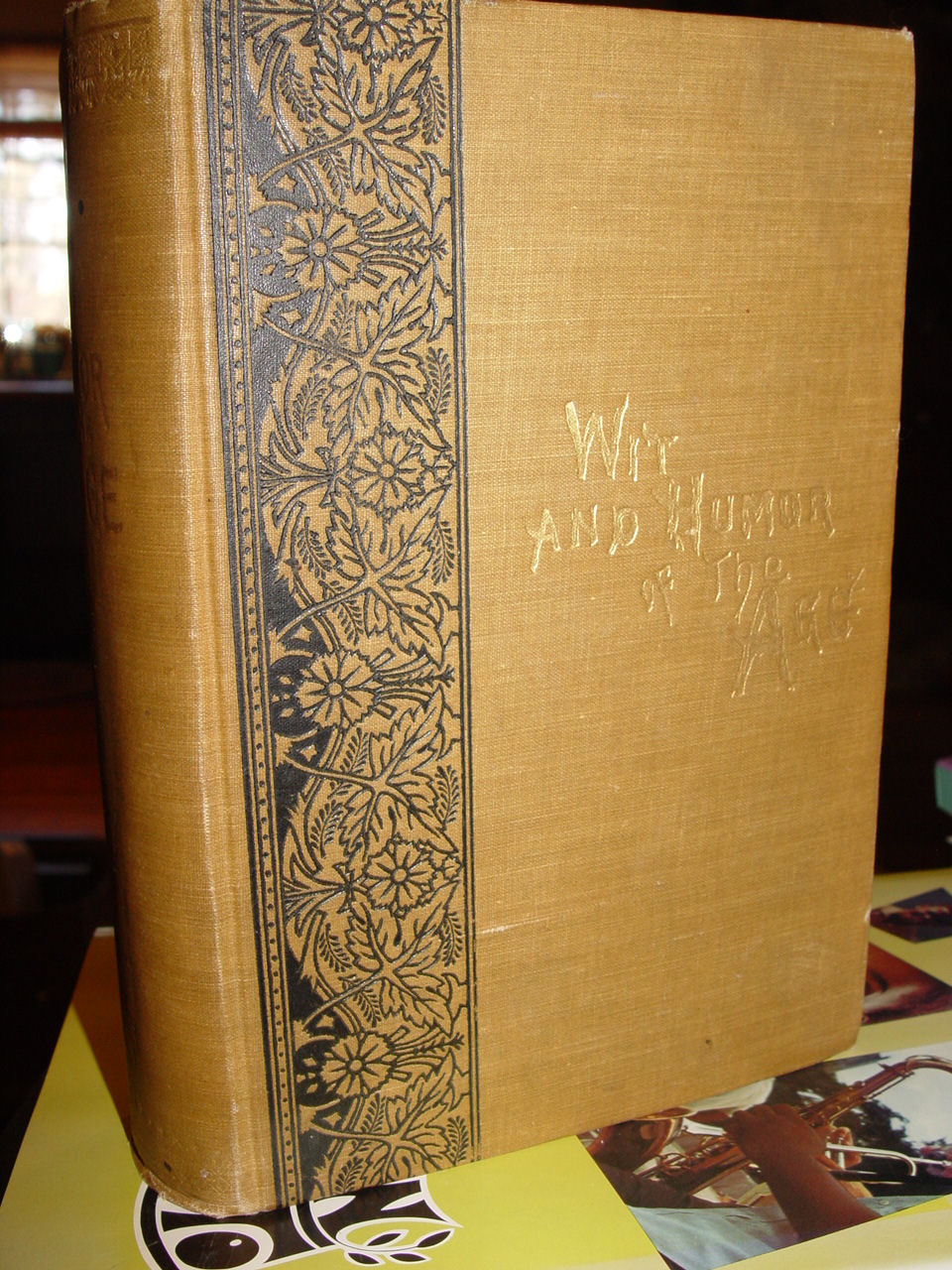 Wit And Humor Of The Age;                                         Comprising Wit, Humor, Pathos,                                         Ridicule, Satires, Dialects,                                         Puns, Conundrums, Riddles,                                         Charades, Jokes And Magic by                                         Mark Twain 1883