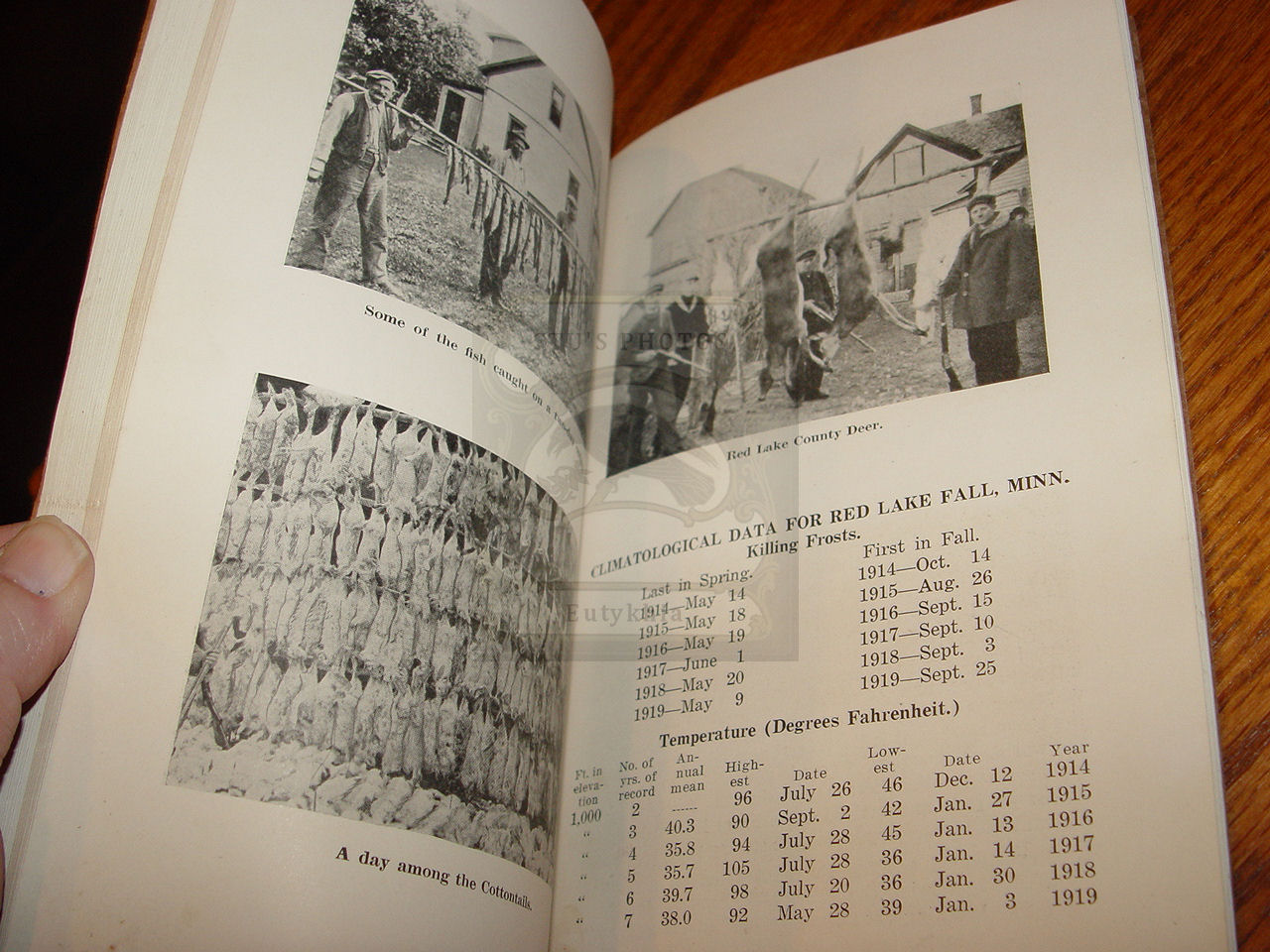 The Second Annual                                         Report of the County Agent Red                                         Lake County 1919 ~ Rare Native                                         American